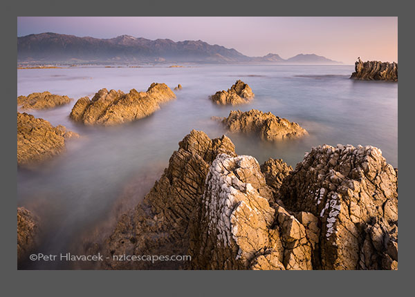 Pastel colours of dawn on rocky shores of Kaikoura coastline with Seaward Kaikouras mountains in background, Kaikoura, Marlborough Region, South Island, East Coast, New Zealand