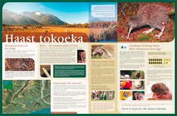 Department of Conservation – Haast Info Panel