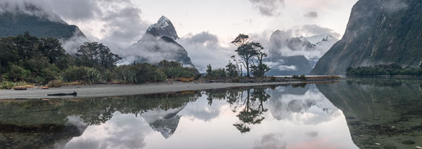 Dawn in Milford Sound