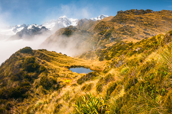 Wilderness of The Southern Alps