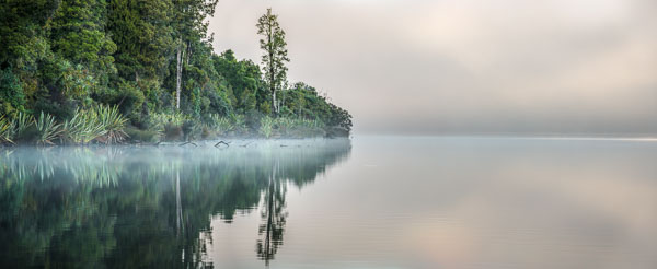 Morning at Lake Mapourika